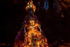 Zucchina - illuminée3